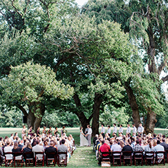 ceremony-under-weeping-cherry